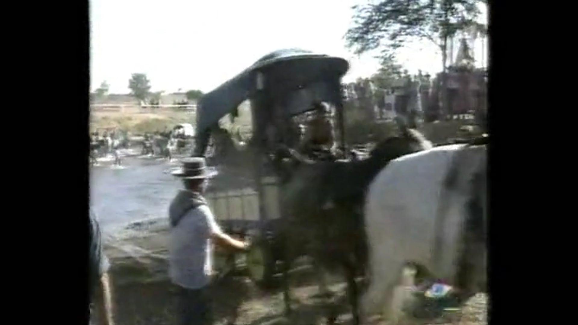 Hermandad del Rocío de Los Palacios 4. Camino de Vuelta 2001