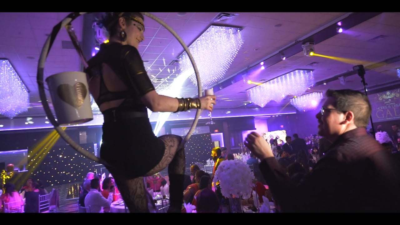 | Billionaire Events | Hopes And Dreams Gala Highlight | Shot & Edited by: Vidaer Studios |