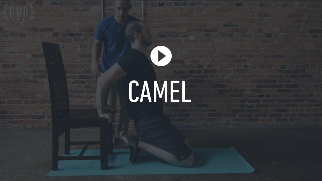 FF Camel Stretch