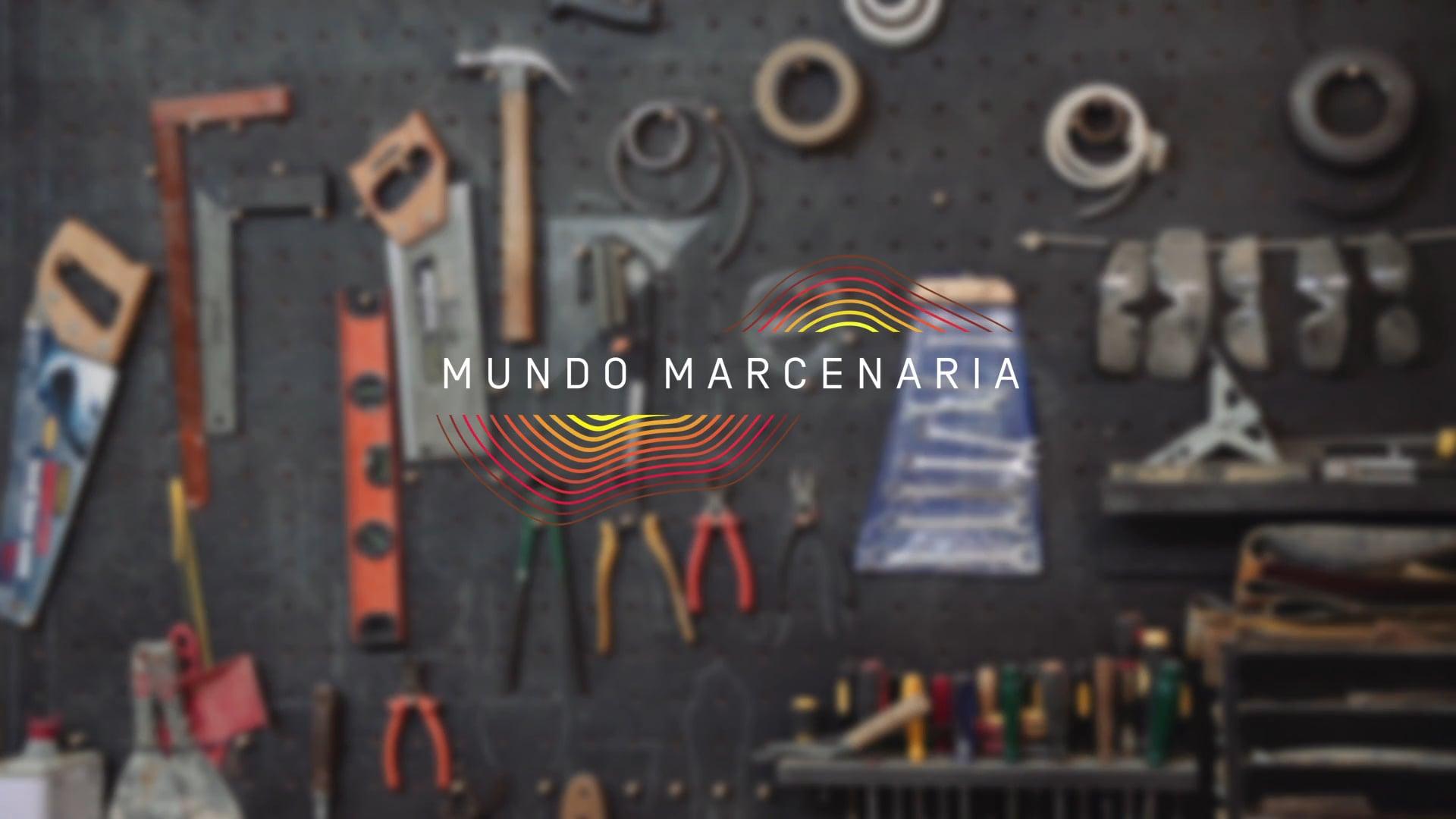 Workshop de Introdução à Marcenaria: Mundo Marcenaria