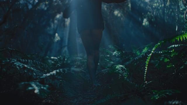 TROUSERLESS NIGHTMARE - Alex Nicholson