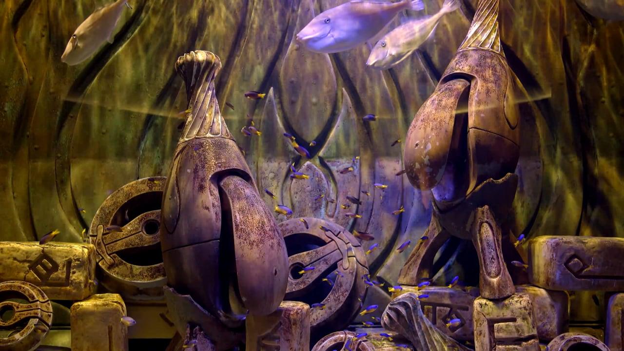 PREVIEW Ornamental Aquarium