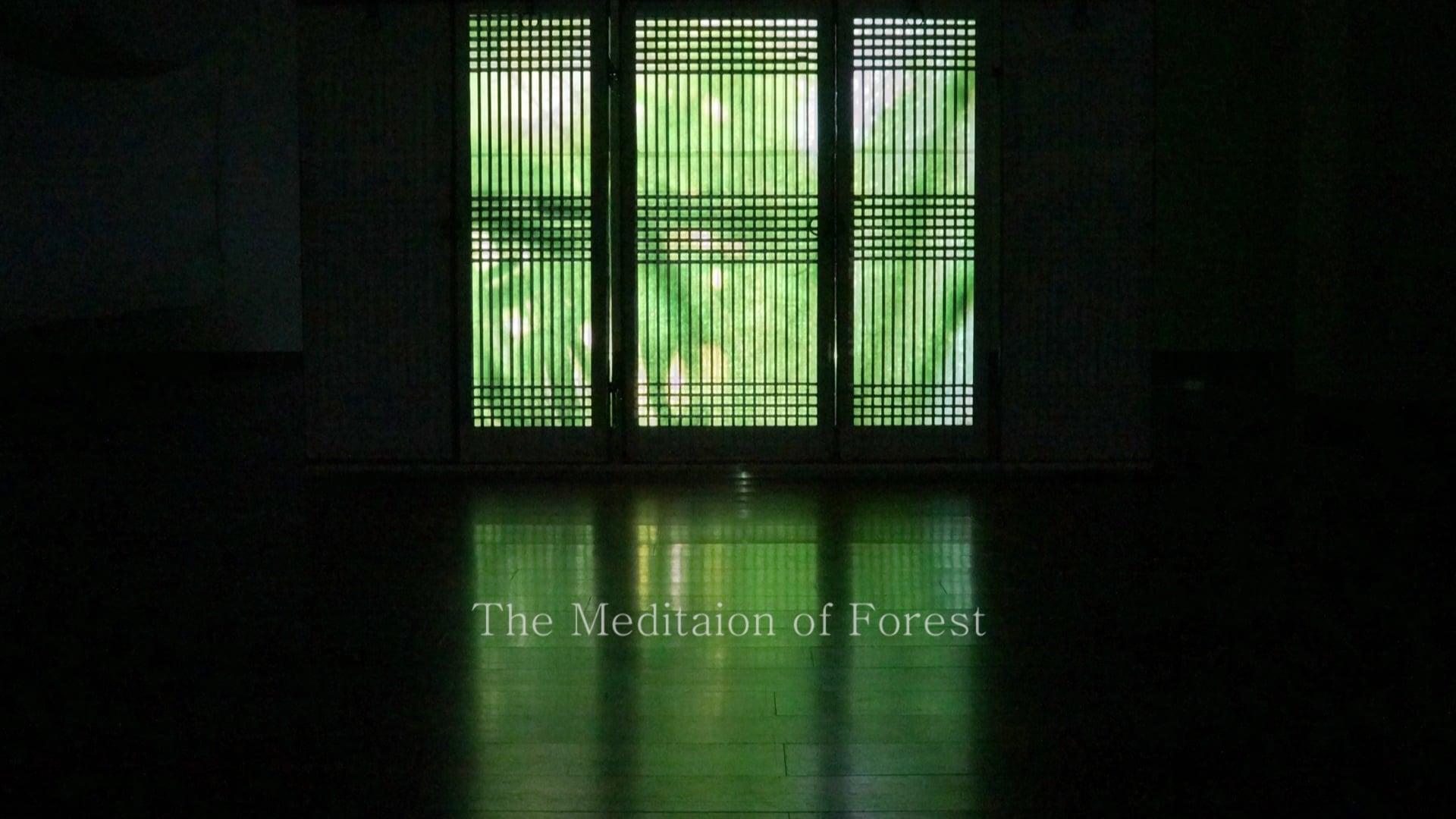 The Landscape of Meditation by NK HONG (aka Nakyum Hong ) 2013  홍나겸 사유(思惟)의풍경