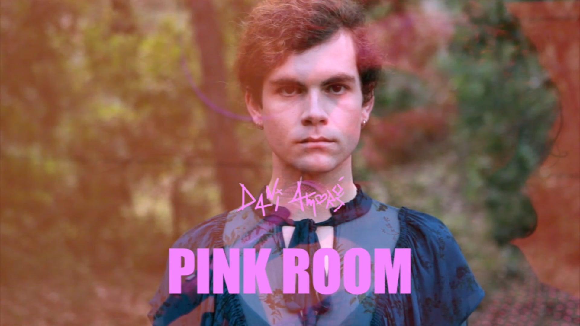 Pink Room Work in Progress Assaig
