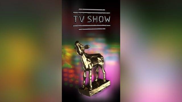 Gouden kalf  -  TV show