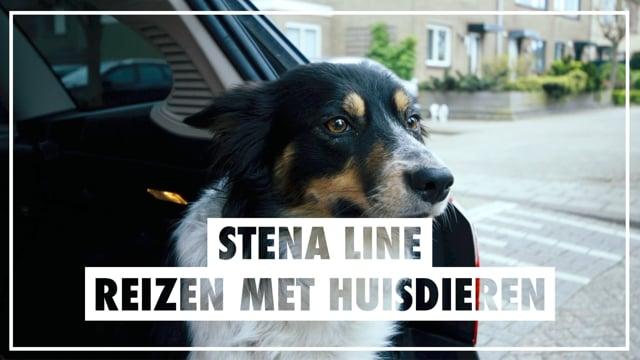 Stena Line Huisdieren mee aan boord
