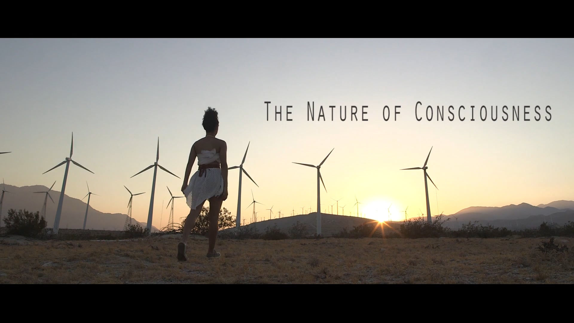 Trailer: The Nature of Consciousness