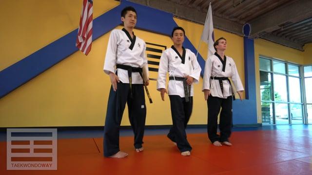 Yellow Belt Board Breaking - Side Kick