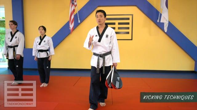 Green Belt Kicking Techniques