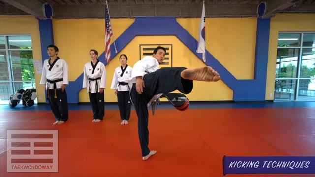Blue Belt Kicking Techniques
