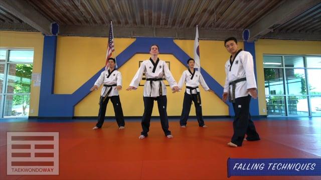 Blue Belt Falling Techniques