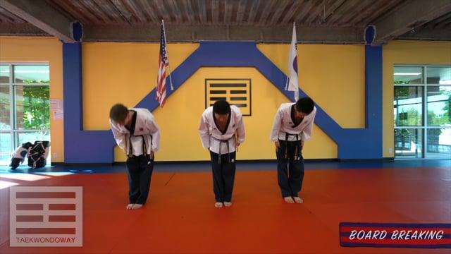 Advanced Blue Belt Board Breaking