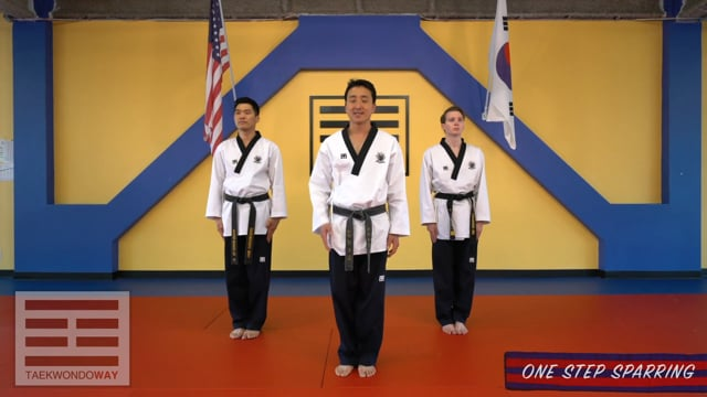 Advanced Blue Belt One Step Sparring