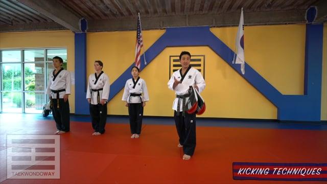 Advanced Blue Belt Target Hitting Kicking Techniques