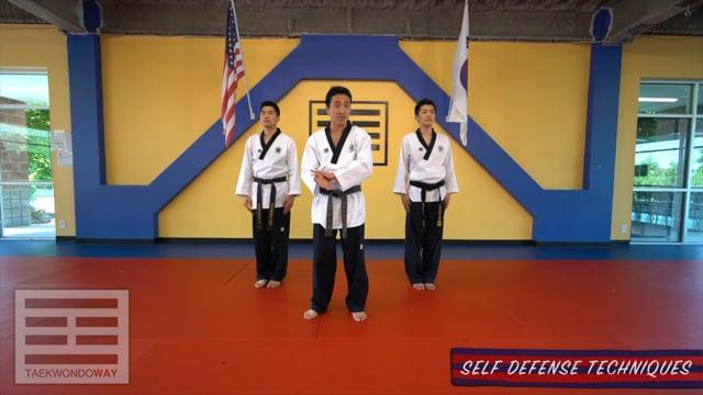 Advanced Blue Self Defense