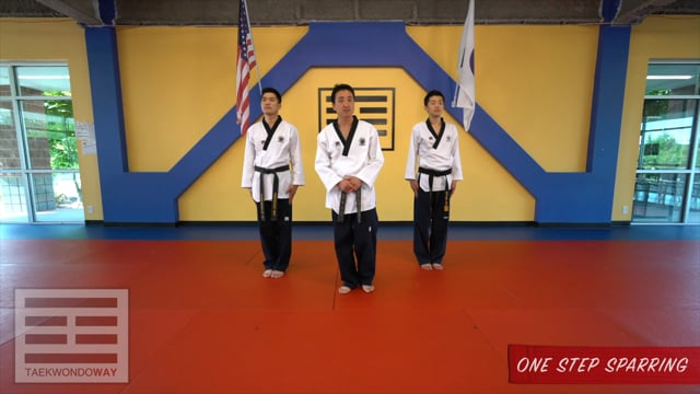 Red Belt One Step Sparring