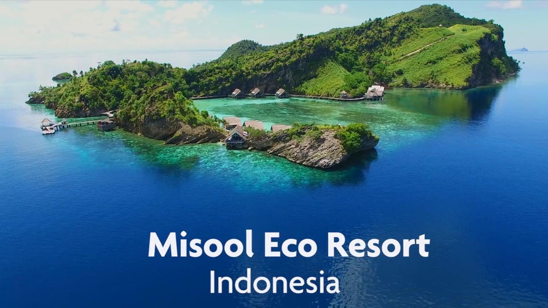 Misool, Raja Ampat, Indonesia