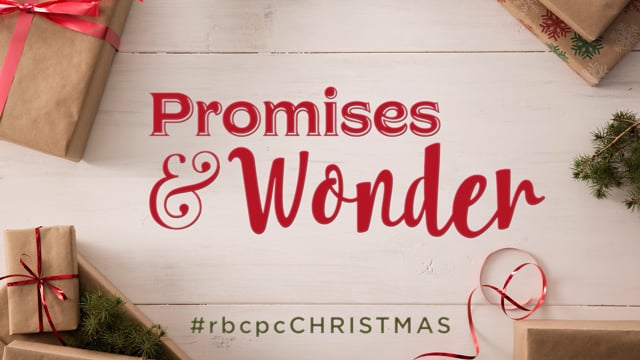 Promises and Wonder Christmas Bumper