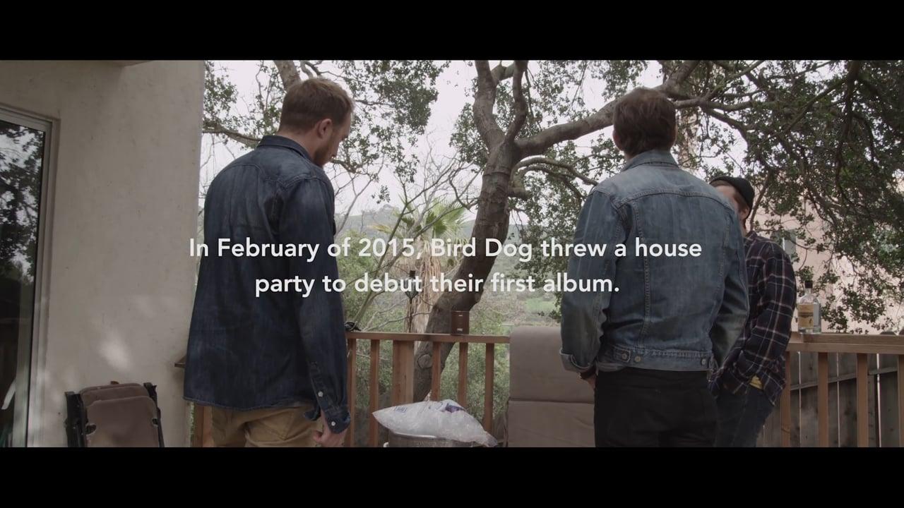 Bird Dog House Show