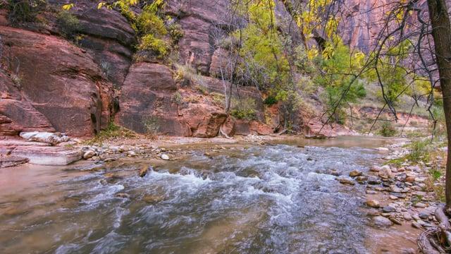 Zion National Park, Autumn - Preview
