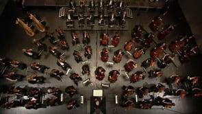 Bartok & Beethoven