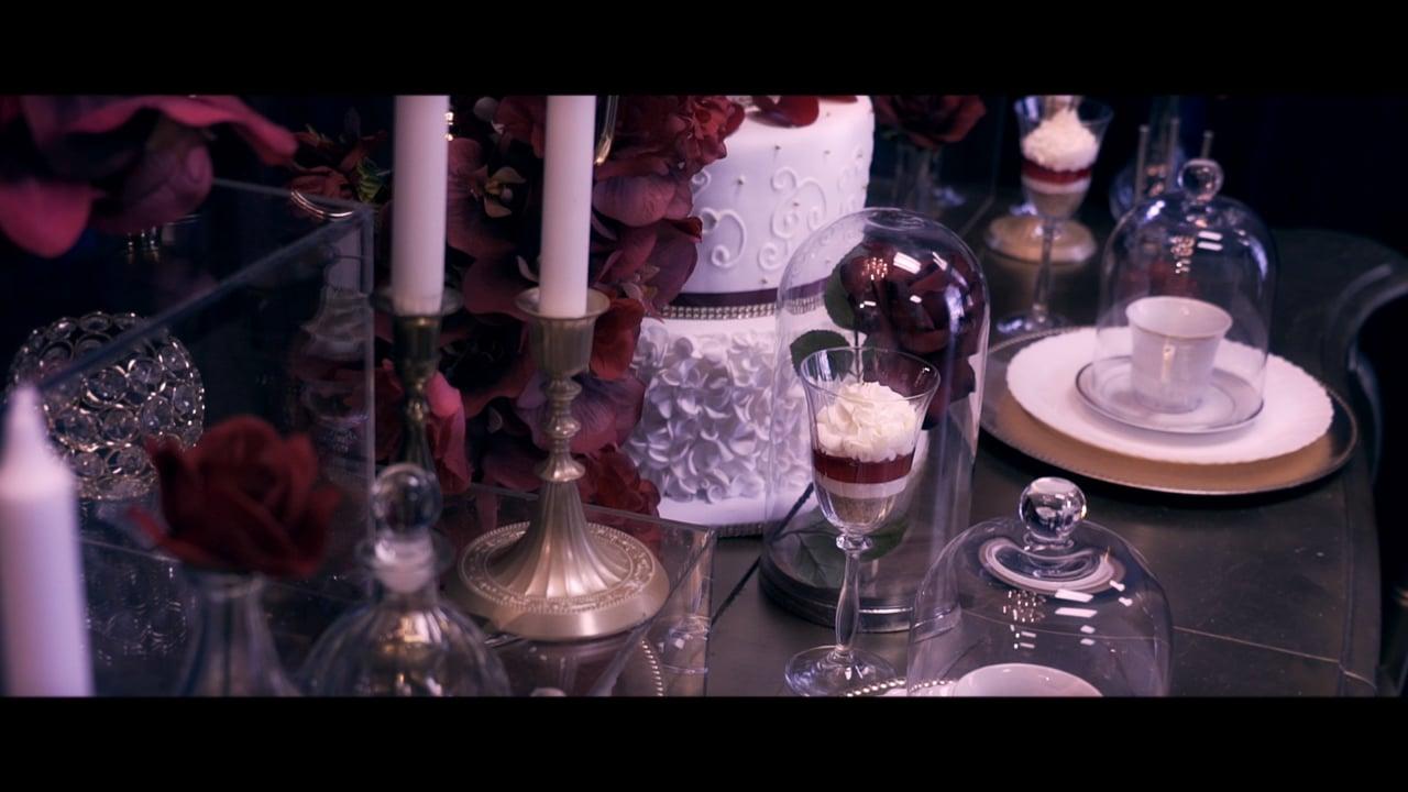 | Crossover Bollywood | Beauty & The Beast Concept Shoot | Shot & Edited by: Vidaer Studios |