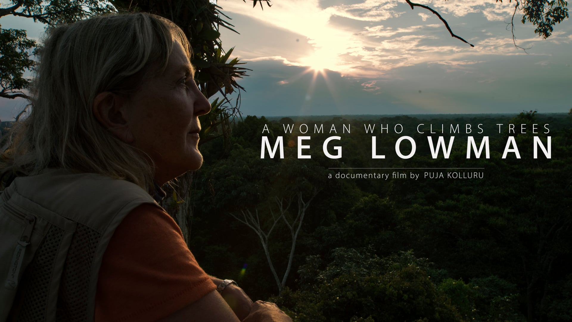 A Woman Who Climbs Trees: Meg Lowman