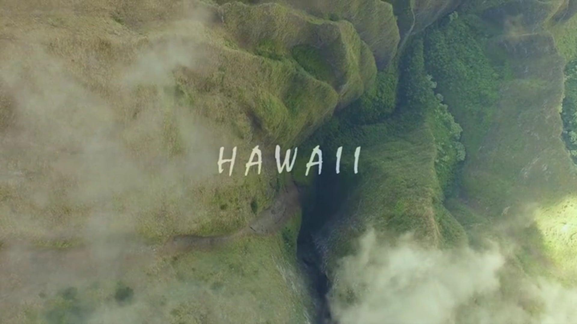 Hawaii   2017z