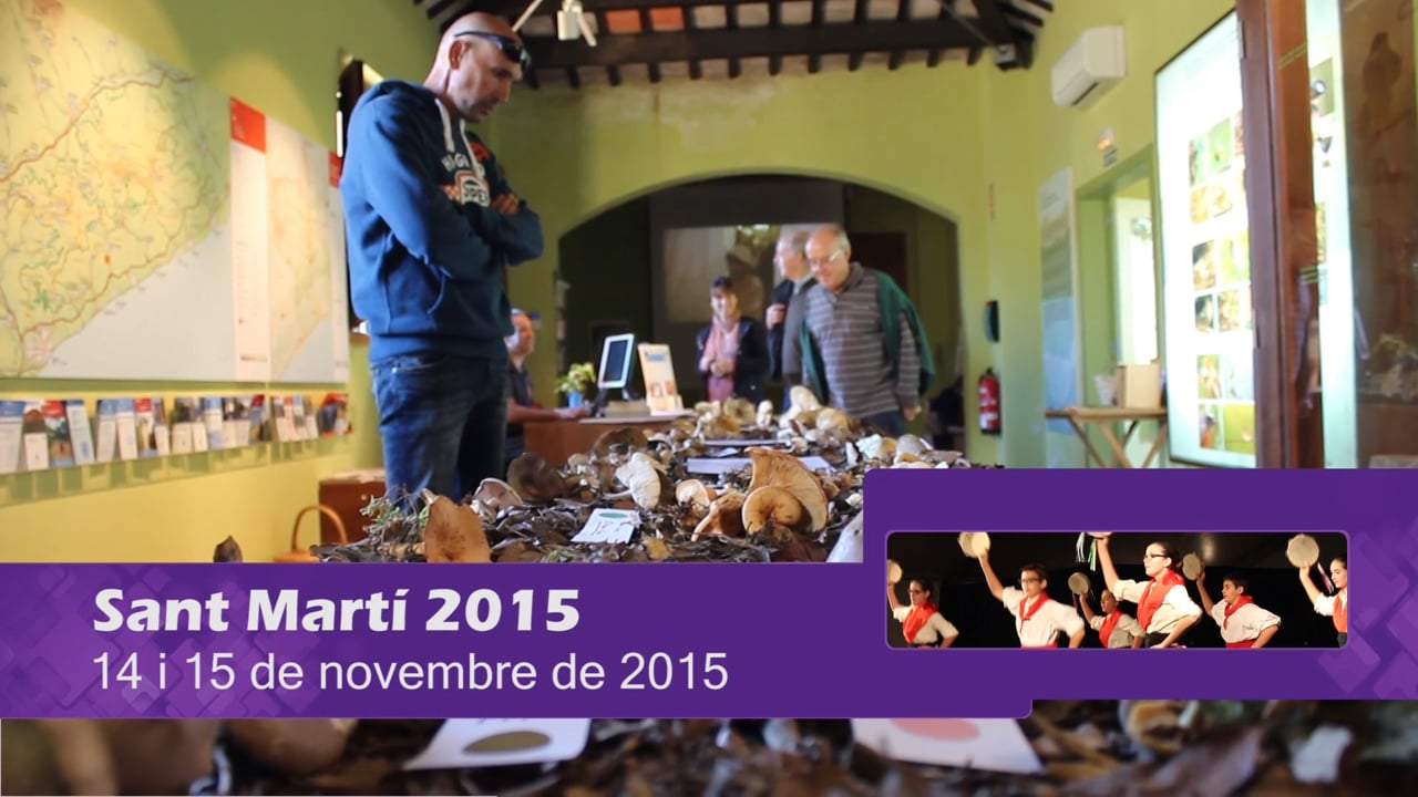 Festa Major de Sant Martí 2015 (dies 14 i 15)