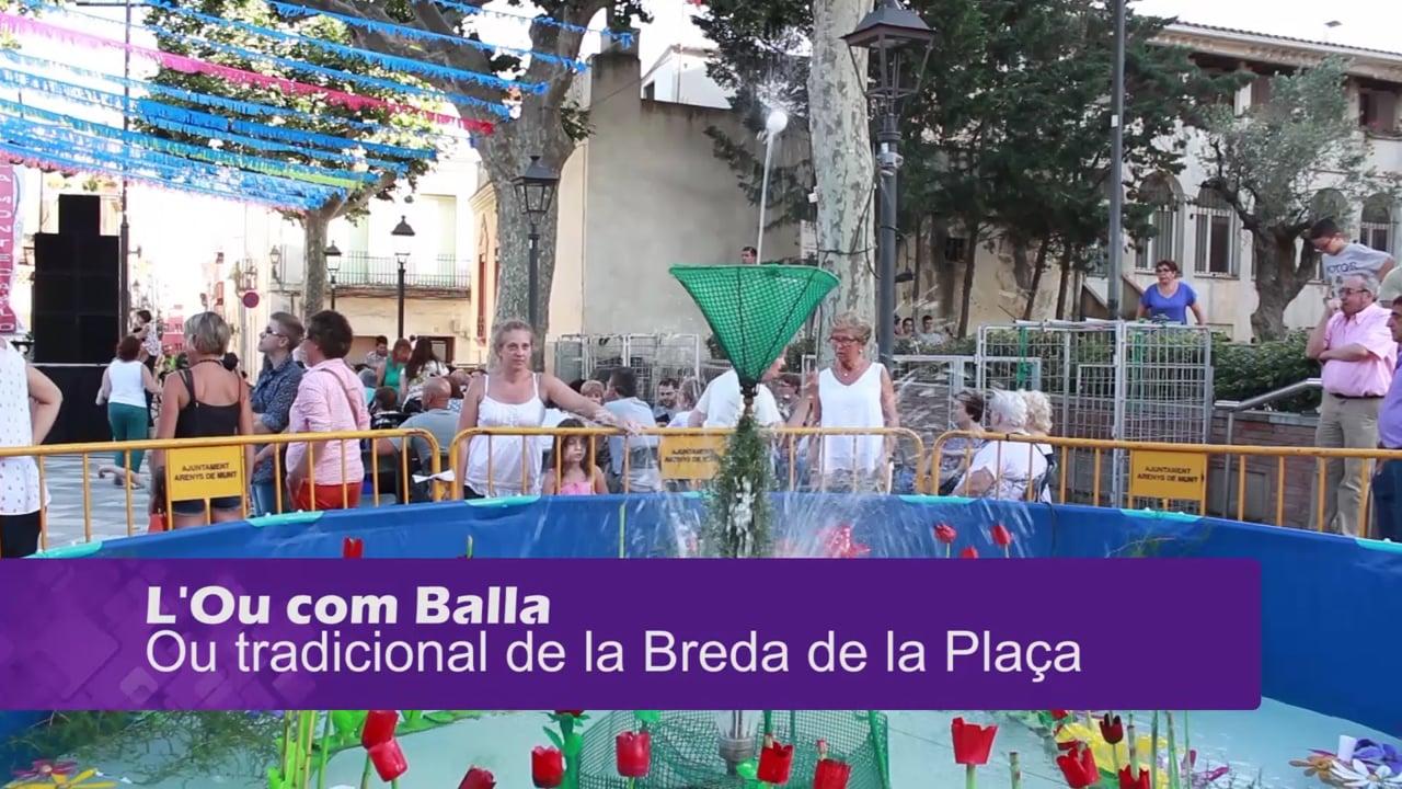 Breda de la Plaça 2016