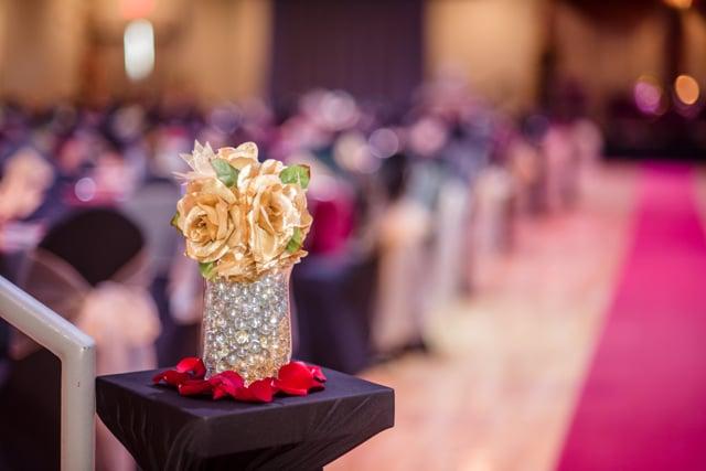 Mazhar & Rumina's Beautiful Knoxville Wedding