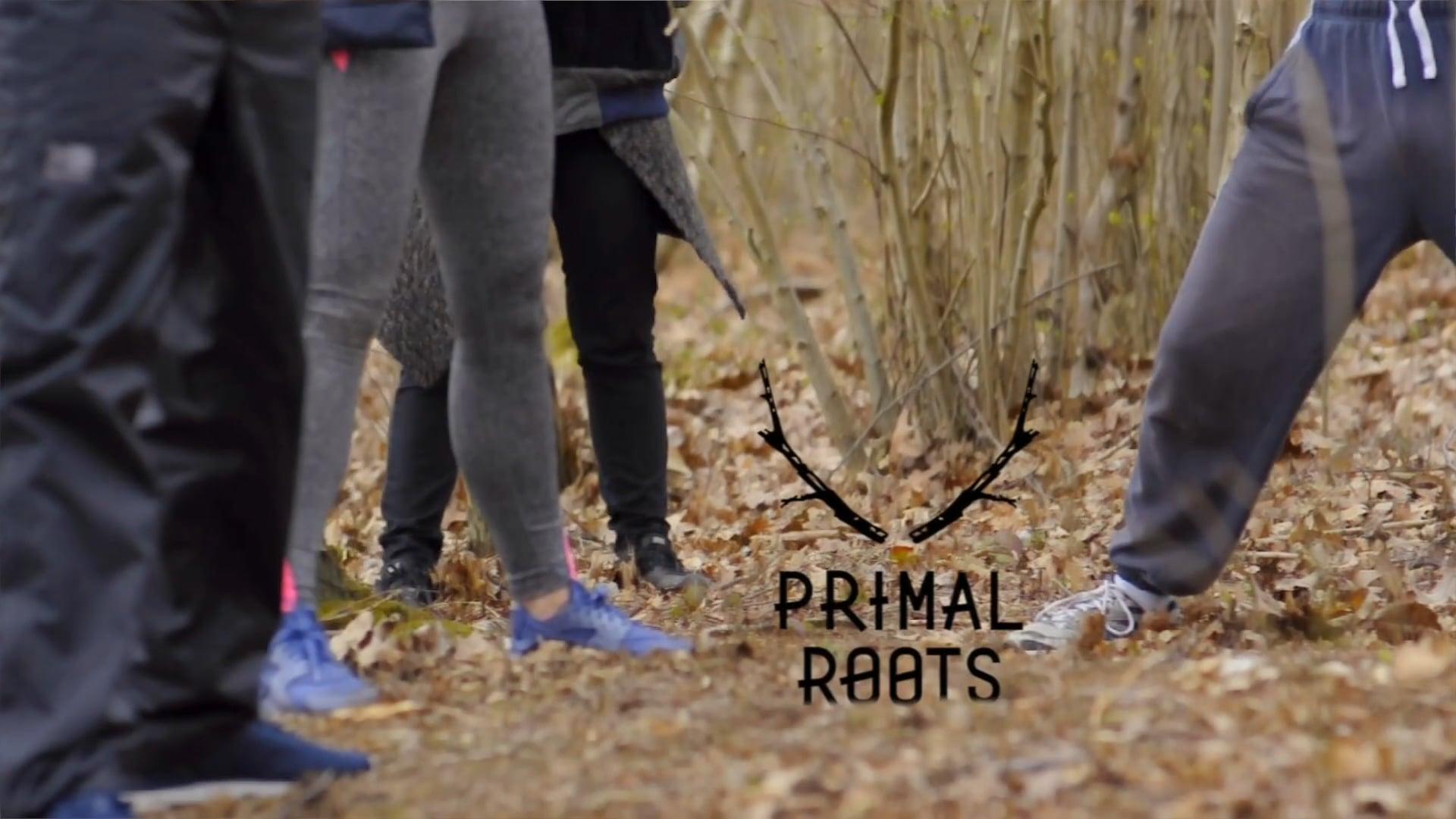 Primal Roots
