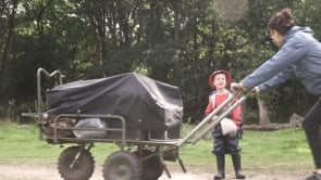 Watch Find out about setting up and running a forest nursery?