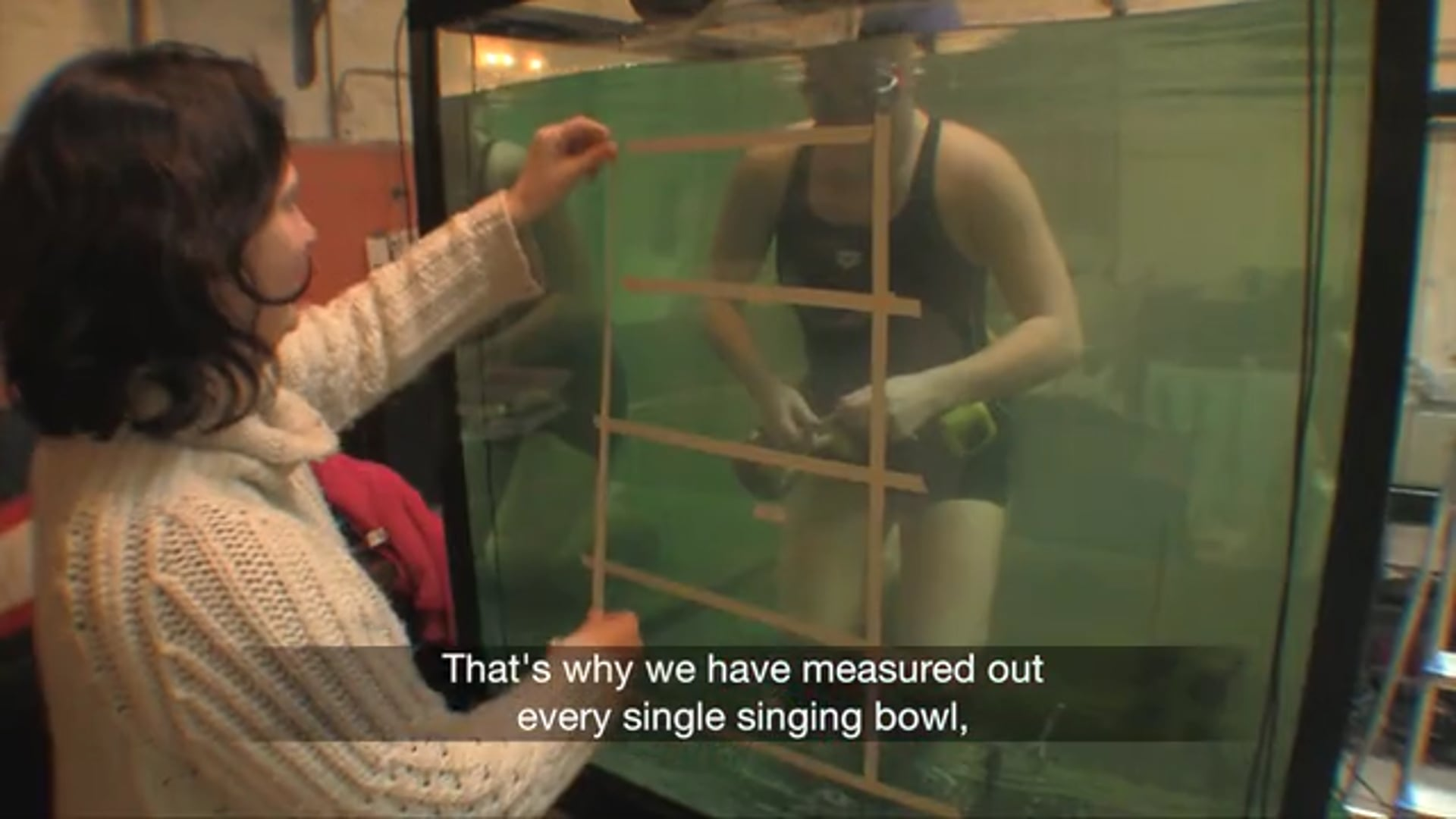 Acoustics and Percussion under water