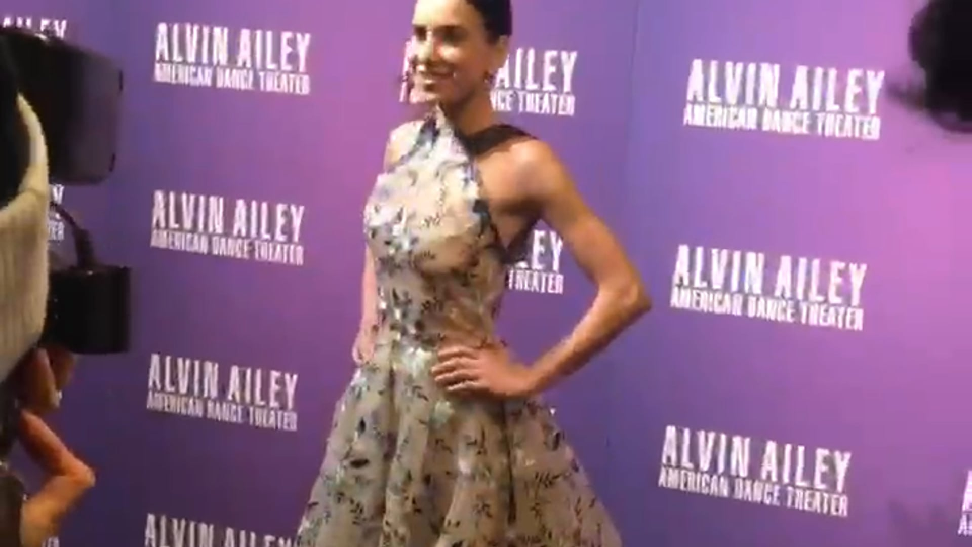 Red Carpet - Alvin Ailey Gala