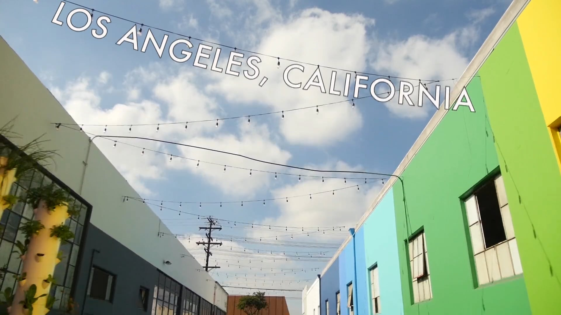 True Treps: Hedley & Bennet, Los Angeles CA