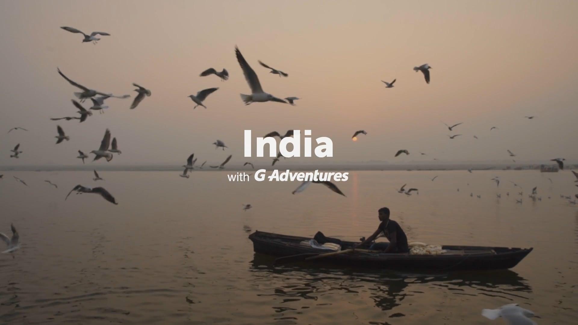 Wellness Retreat to India