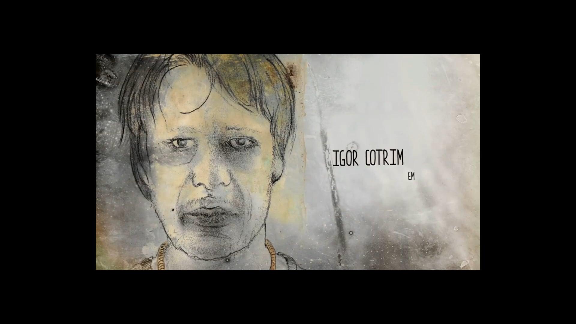 Igor Cotrim _Portfólio