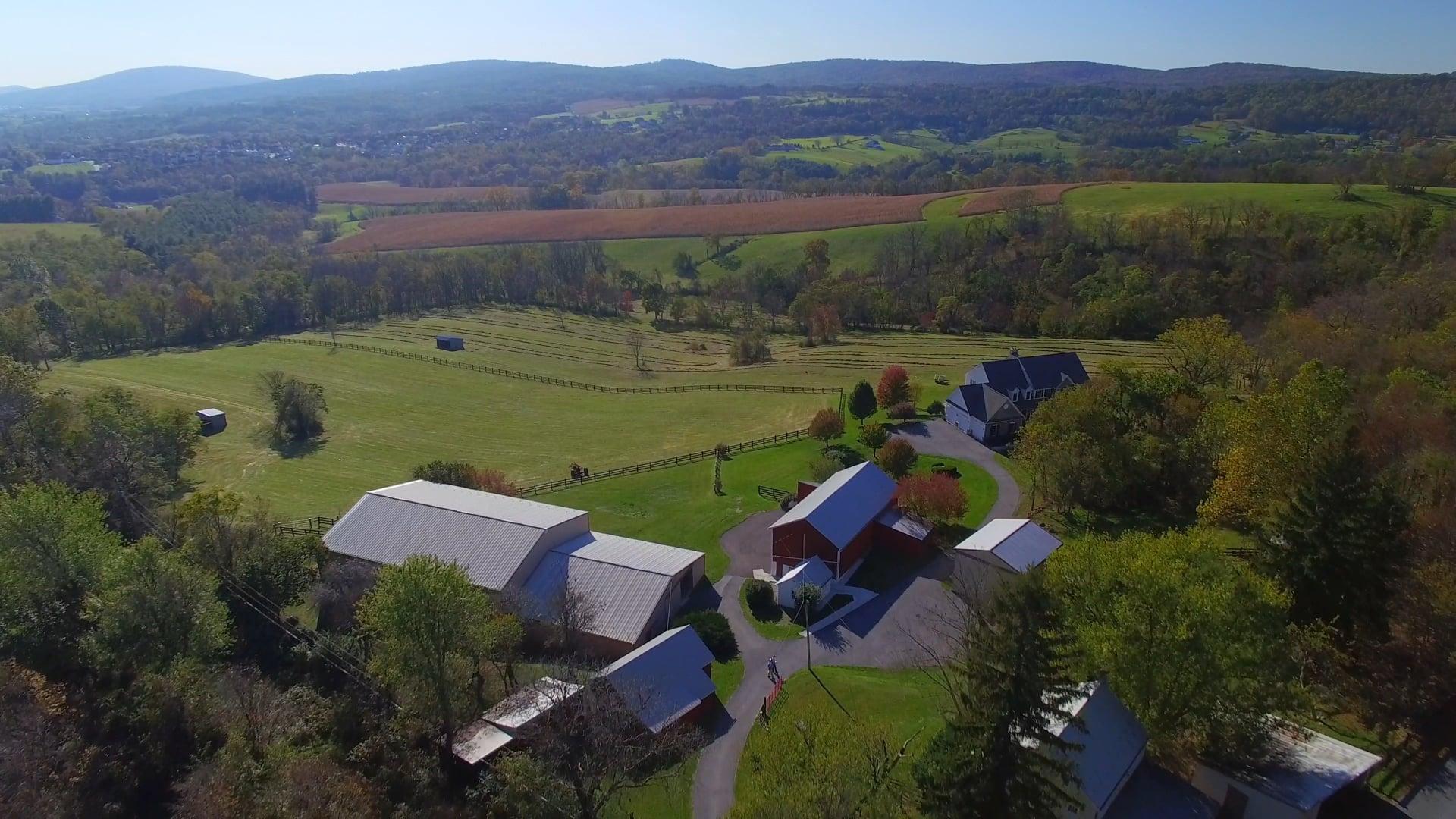 The Farm 4K