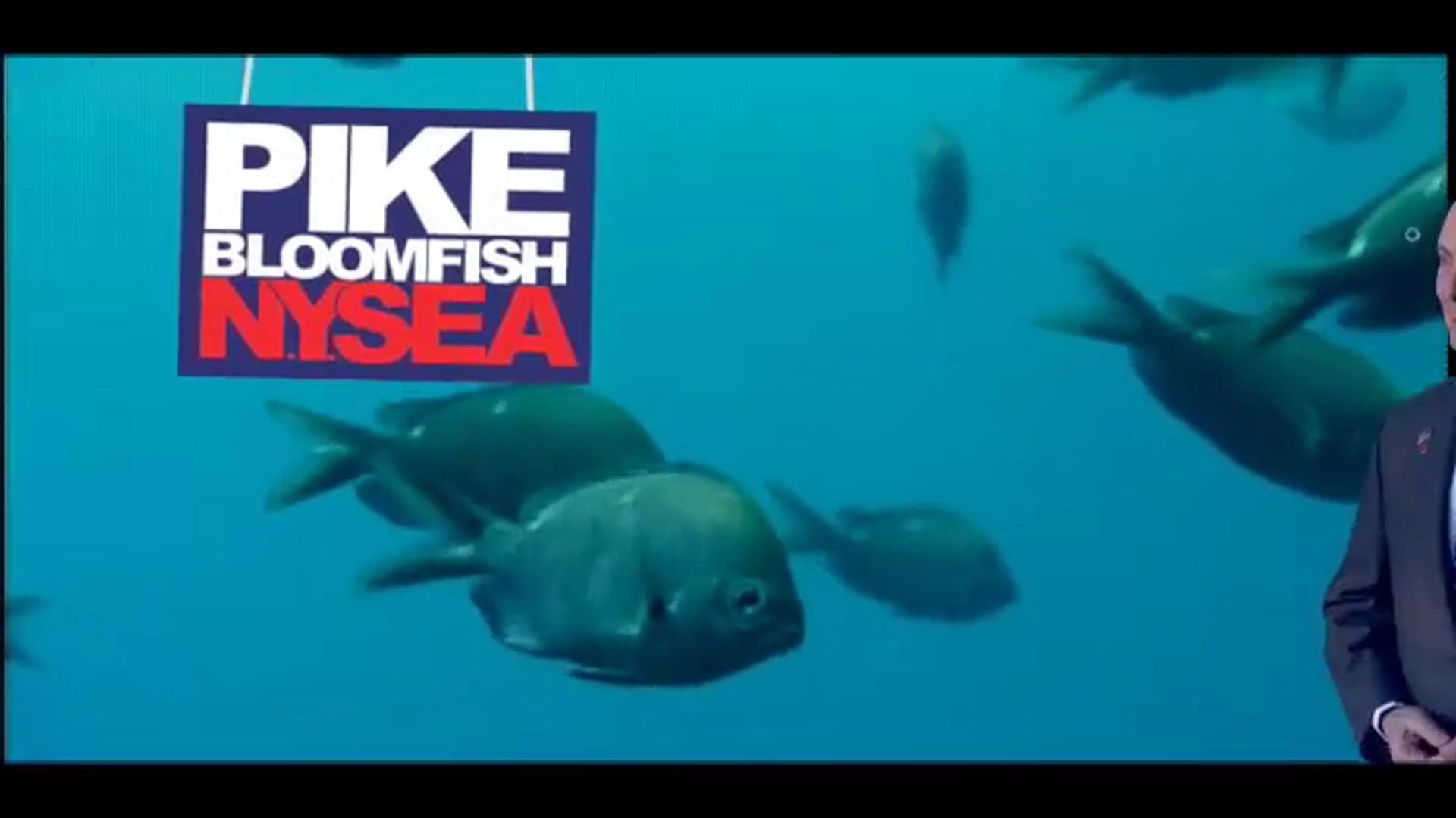 Bloomfish | Political Ad
