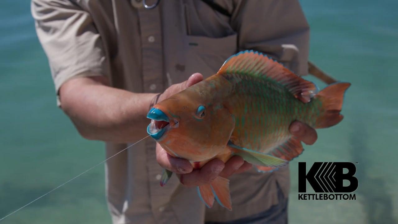Kettlebottom Fishing Reel