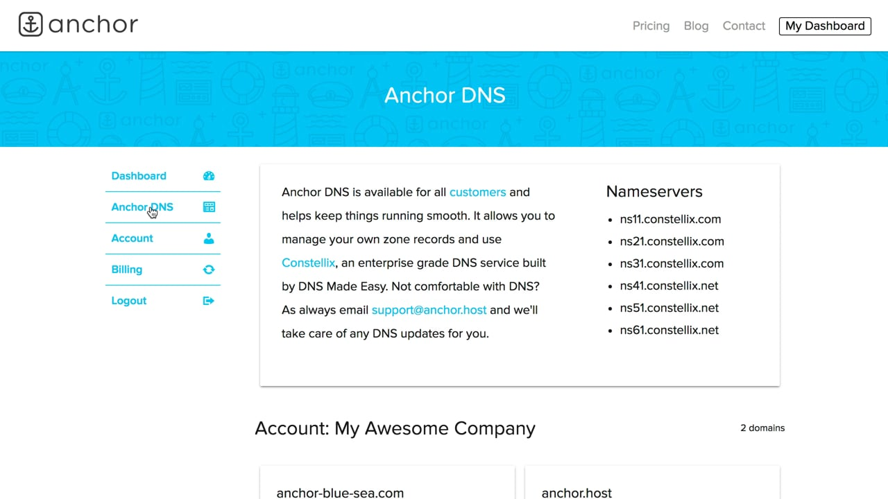 Overview of Anchor DNS