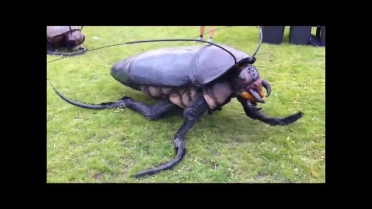 Big Bugs ShowReel