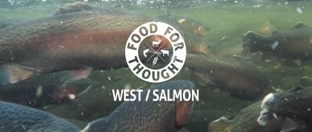 Food For Thought - West / Salmon, Ep. 1