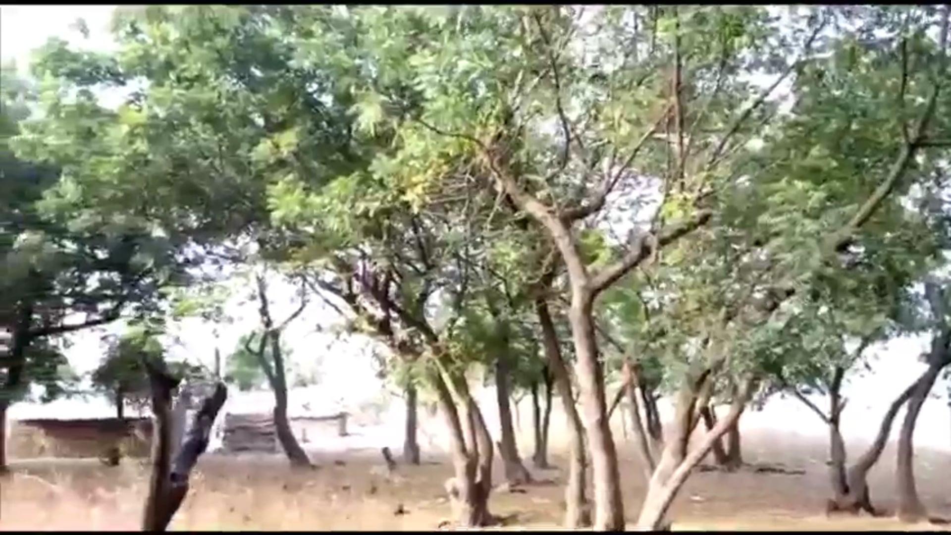 Ryvanz-Mia Donation to Gabi-Kpo community on the Volta Lake.