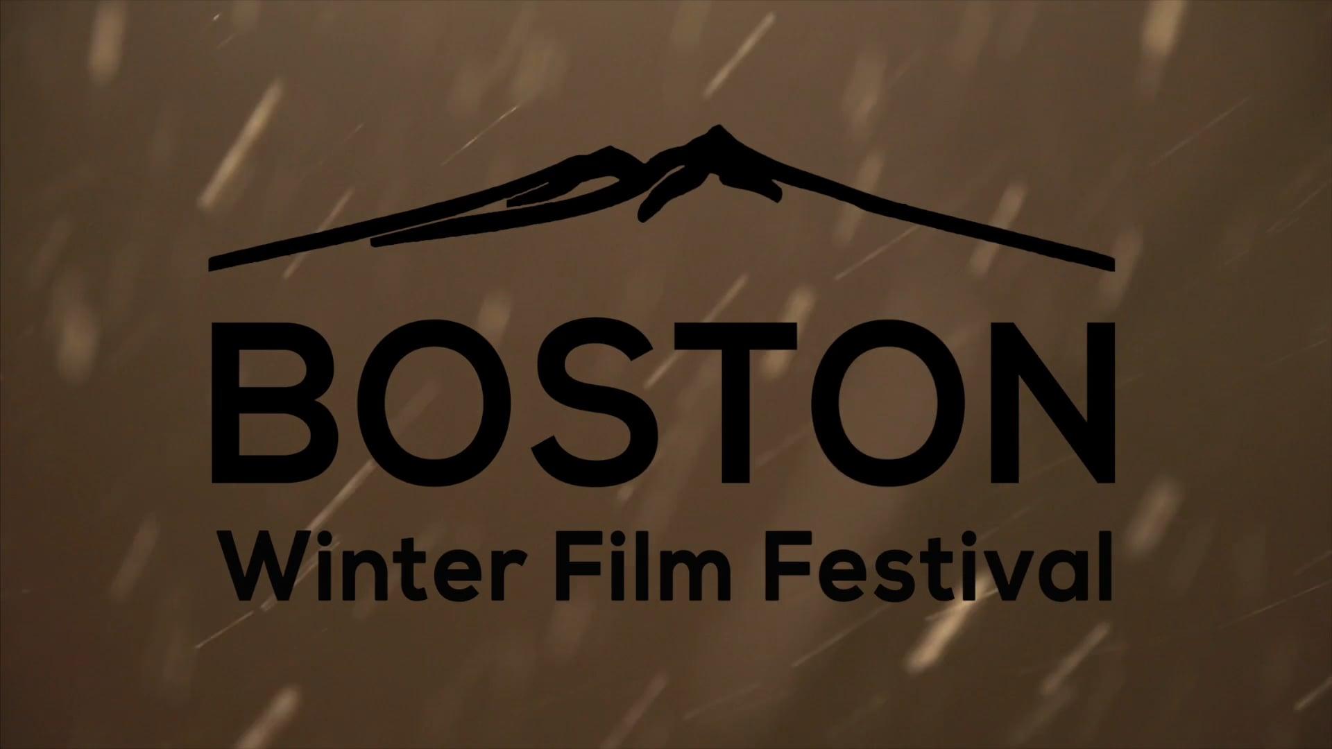 2017 Boston Winter Film Festival