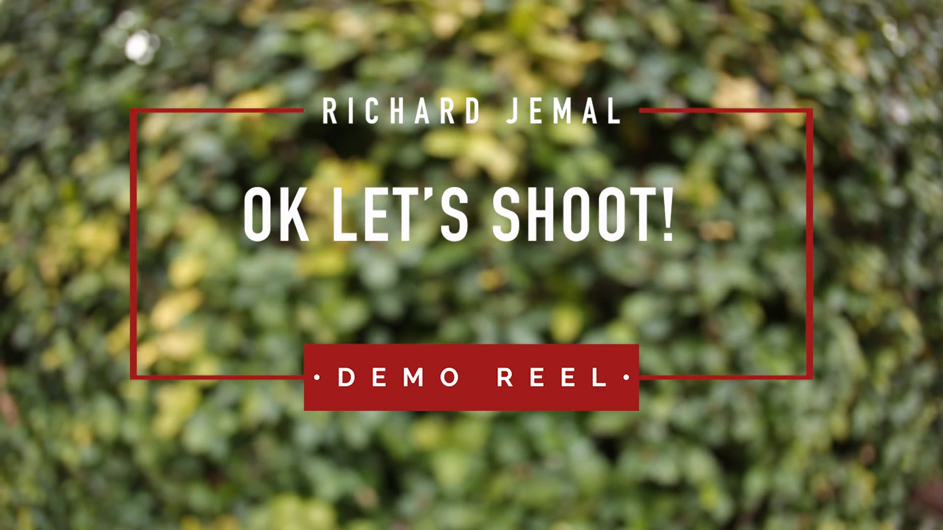 Ok Let's Shoot: Demo Reel