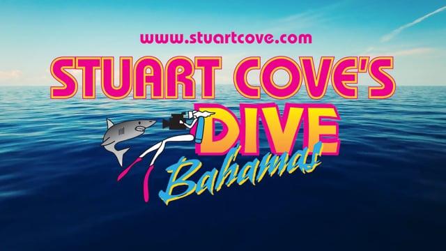 Stuart Cove's Dive Bahamas 2017 2:07