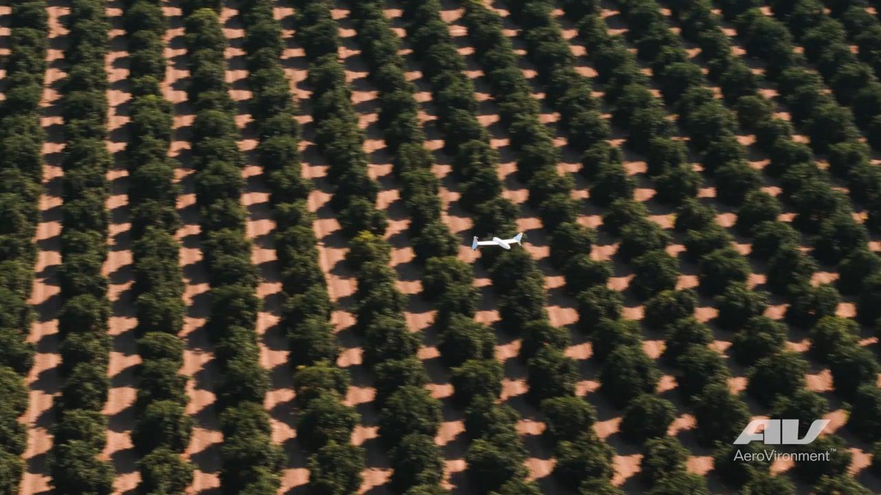 AeroVironment Quantix Drone