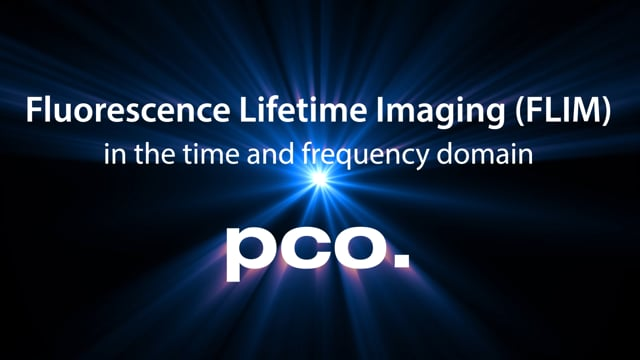 Frequency Domain Fluorescence Lifetime Imaging (FD-FLIM)